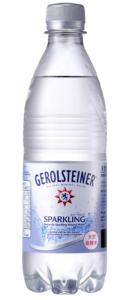 ゲロルシュタイナー1