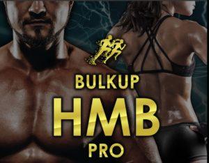 bulk up pro