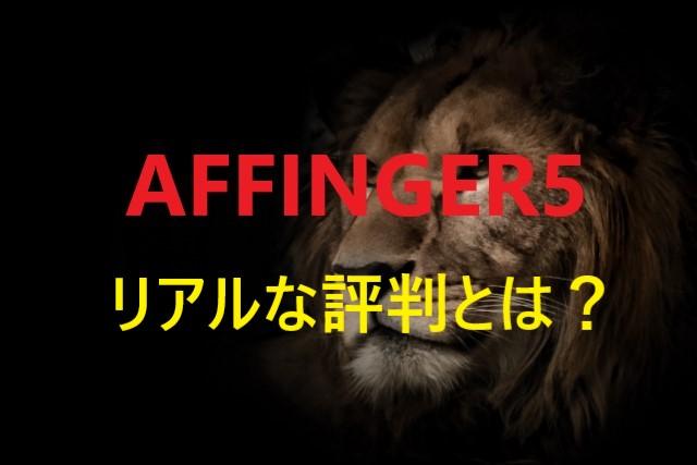 affinger5 repute